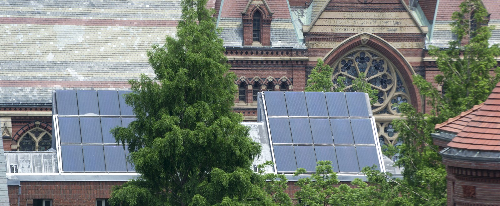 Solar Panels sit atop Harvard's Canaday Hall.