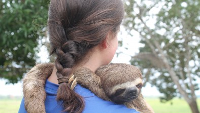 Molly Leavens holds a sloth