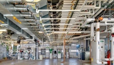 The impact of green buildings on cognitive function for Indoor environmental quality design