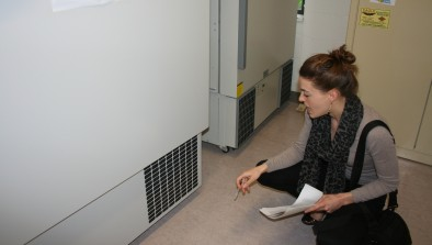 Make sure your freezer is properly maintained
