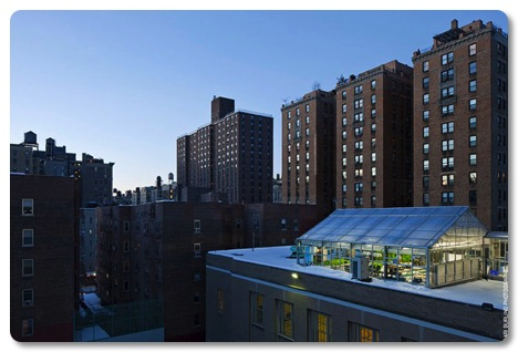Rooftop greenhouse on a NYC public school. Source: http://www.farmxchange.org/top-8-urban-farms-in-the-world/